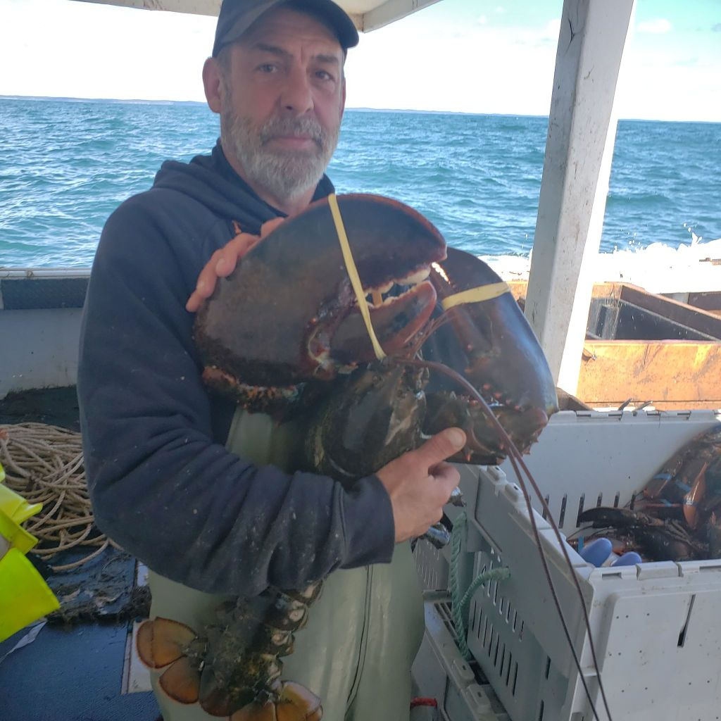 Mark Prevost on a fishing boat holding a lobster.