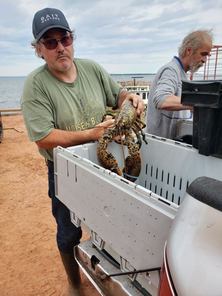 Wally MacPhee helping to unload lobster from the back of a truck.