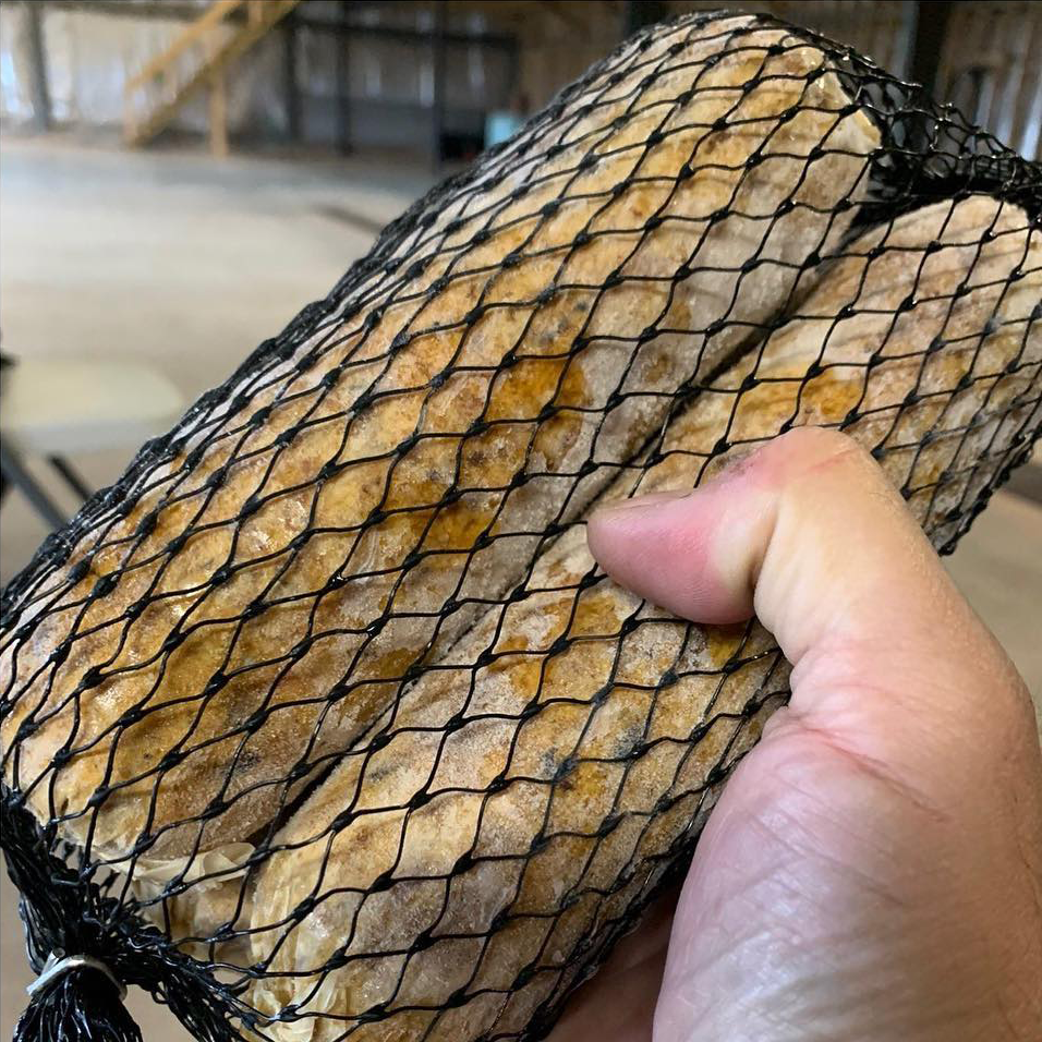a photograph of two 'bait sausages' in a black mesh bait bag